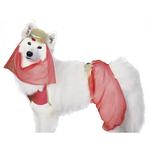 View Image 1 of Harem Dog Halloween Costume