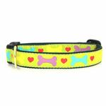Heart and Bone Dog Collar by Up Country