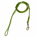View Image 1 of Hematite Pebbies Dog Leash - Green