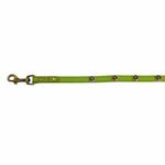 View Image 4 of Hematite Pebbies Dog Leash - Green