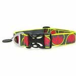 View Image 2 of Hoopie Dog Collar by RuffWear - Lotus