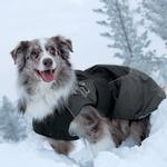 View Image 2 of Hurtta Dog Winter Jacket - Red