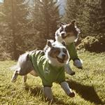 View Image 1 of Hurtta Frost Dog Jacket - Birch