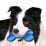 View Image 1 of Hydro Bone Dog Toy