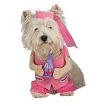 View Image 1 of I Dream of Jeannie Dog Halloween Costume
