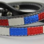 View Image 2 of Ice Cream Dog Leash - Patriotic Bone