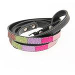 View Image 2 of Ice Cream Dog Leash - Pink Bones