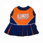 View Image 1 of Illinois Cheerleader Dog Dress