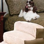 View Image 1 of Inflatable Pet Steps