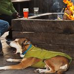 View Image 2 of K-9 Overcoat Utility Dog Jacket by RuffWear - Forest Green
