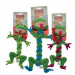 View Image 2 of Kong BraidZ Dog Toy - Frog