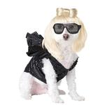 Pop Sensation Dog Costume