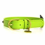 View Image 2 of Blue Petal Leather Dog Collar - Green