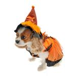 View Image 1 of LED Witch Dog Costume - Orange and Black