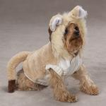 View Image 3 of Lil' Lion Costume for Dogs by Casual Canine