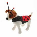 View Image 1 of Little Ladybug Dog Costume Harness