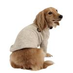View Image 2 of Maddox Dog Sweater by Puppia - Beige