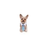 View Image 2 of Mason Dog Shirt Collar & Tie - Blue
