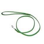View Image 1 of Metallic Dog Leash - Emerald Green