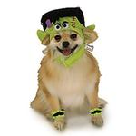 View Image 1 of Mini Monster Dog Halloween Costume Hat