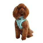 View Image 1 of Modern Zebra Dog Harness by Puppia - Blue