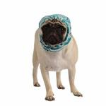 View Image 1 of Modern Zebra Dog Snood by Puppia - Blue
