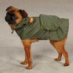 View Image 2 of Monkey Business Stowaway Dog Rain Jacket - Ty