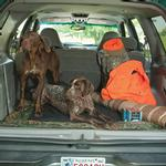 View Image 1 of Mossy Oak Cargo Liner