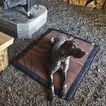 View Image 1 of Mt. Bachelor Pad Dog Bed by RuffWear - Pinecone Brown
