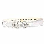 View Image 3 of Multi-Colored Crystal Dog Collar - Silver
