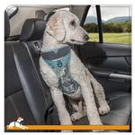 View Image 1 of Muted Floral Car Dog Harness by Kurgo