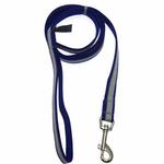 View Image 1 of Precision Dog Leash - Sapphire