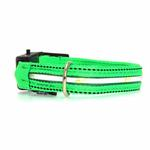 View Image 1 of Neon Dog Collar with White LEDs - Green