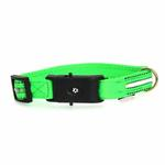 View Image 2 of Neon Dog Collar with White LEDs - Green