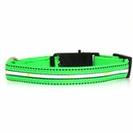 View Image 3 of Neon Dog Collar with White LEDs - Green