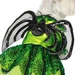 View Image 4 of Neon Spider Princess Halloween Dog Costume