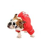 View Image 3 of Number 5 Dog Hoodie by Puppia - Red