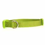 View Image 1 of Nylon Dog Collar by Zack & Zoey - Parrot Green