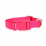 View Image 2 of Nylon Dog Collar by Zack & Zoey - Raspberry Sorbet