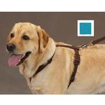 View Image 1 of Nylon Harness by Zack & Zoey - Bluebird
