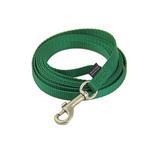 Nylon Leash by Premier - Green