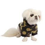 View Image 1 of Odette Dog Hoodie by Pinkaholic - Dark Gray