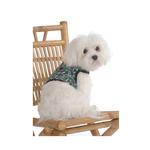View Image 1 of Palms & Surfboard Harness w/ Leash
