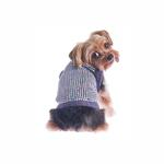 View Image 1 of Party Girl Sequined Dog Sweater