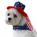 View Image 1 of Patriotic Dog Bandana and Hat