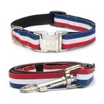 View Image 1 of Patriotic Pooch Dog Collar and Leash Set by Diva Dog