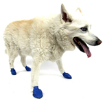 View Image 1 of PawZ Disposable Dog Booties 12pk - Medium Blue