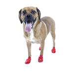 View Image 1 of PawZ Disposable Dog Booties 12pk - Small Red