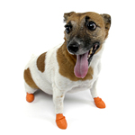 View Image 1 of PawZ Disposable Dog Booties 12pk - X-Small Orange