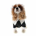 View Image 2 of Pilgrim Girl Dog Costume
